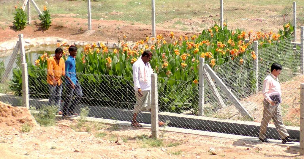 ICRISAT scientists and locals of Mentapally walk past a wastewater treatment plant in the village. The wetland was constructed as part of a CSR initiative of REC Limited. Photo: TN Murthy , BISLD