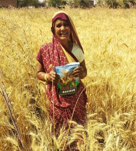 A farmer displaying the inputs she received for her wheat field under the DFI project