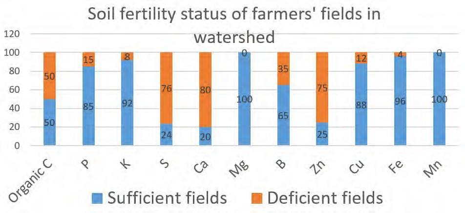 Fig 1. Soil fertility status of farmers' fields in Kurnool watershed.